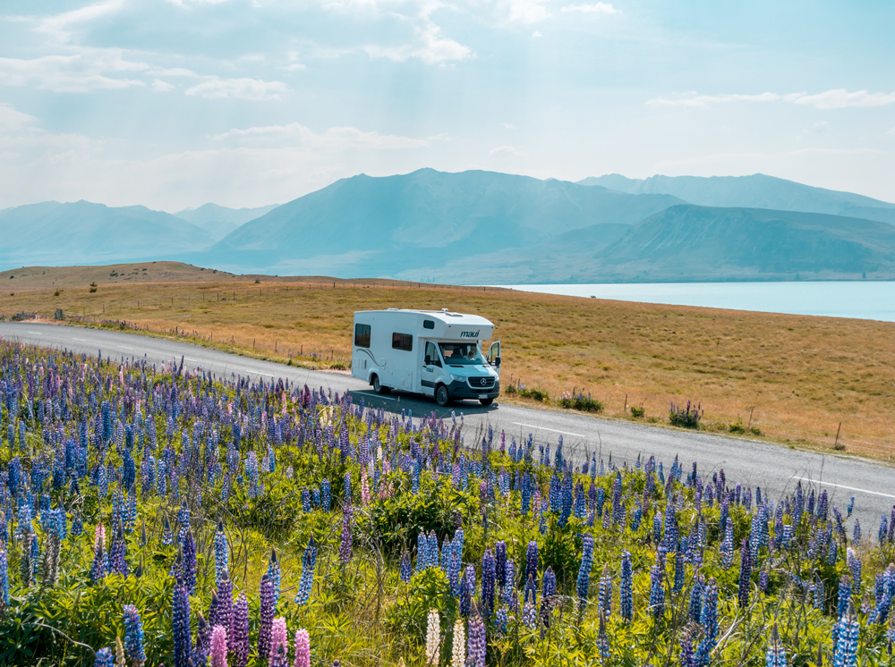 A motorhome travelling through a mountainous region with bluebells on a hill in-front