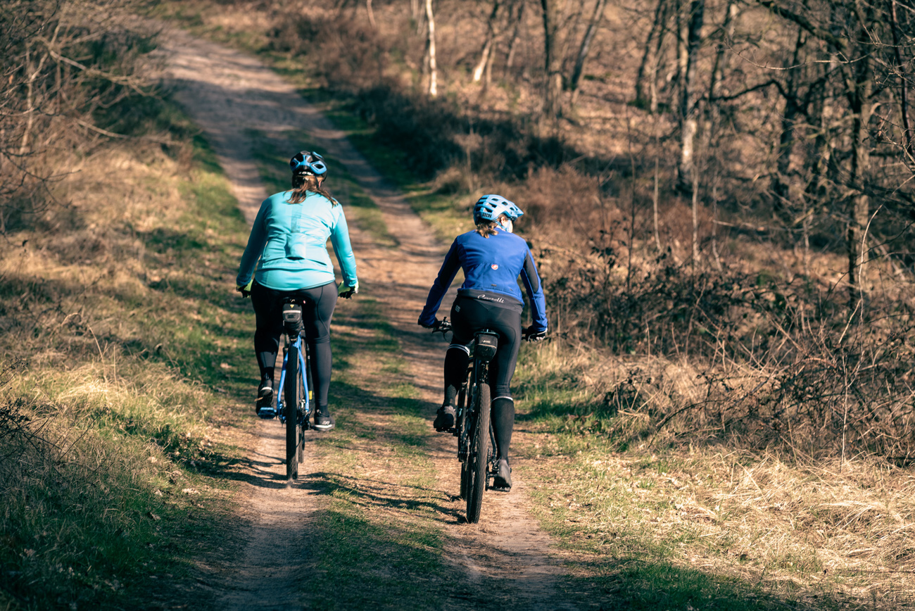 Two cyclists riding along a trail in a grassy wooded area
